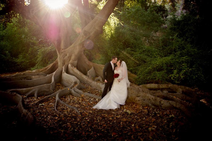 Wedding Photography Perth At Harold Boas Garden Amp Kings